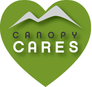 canopy care heart